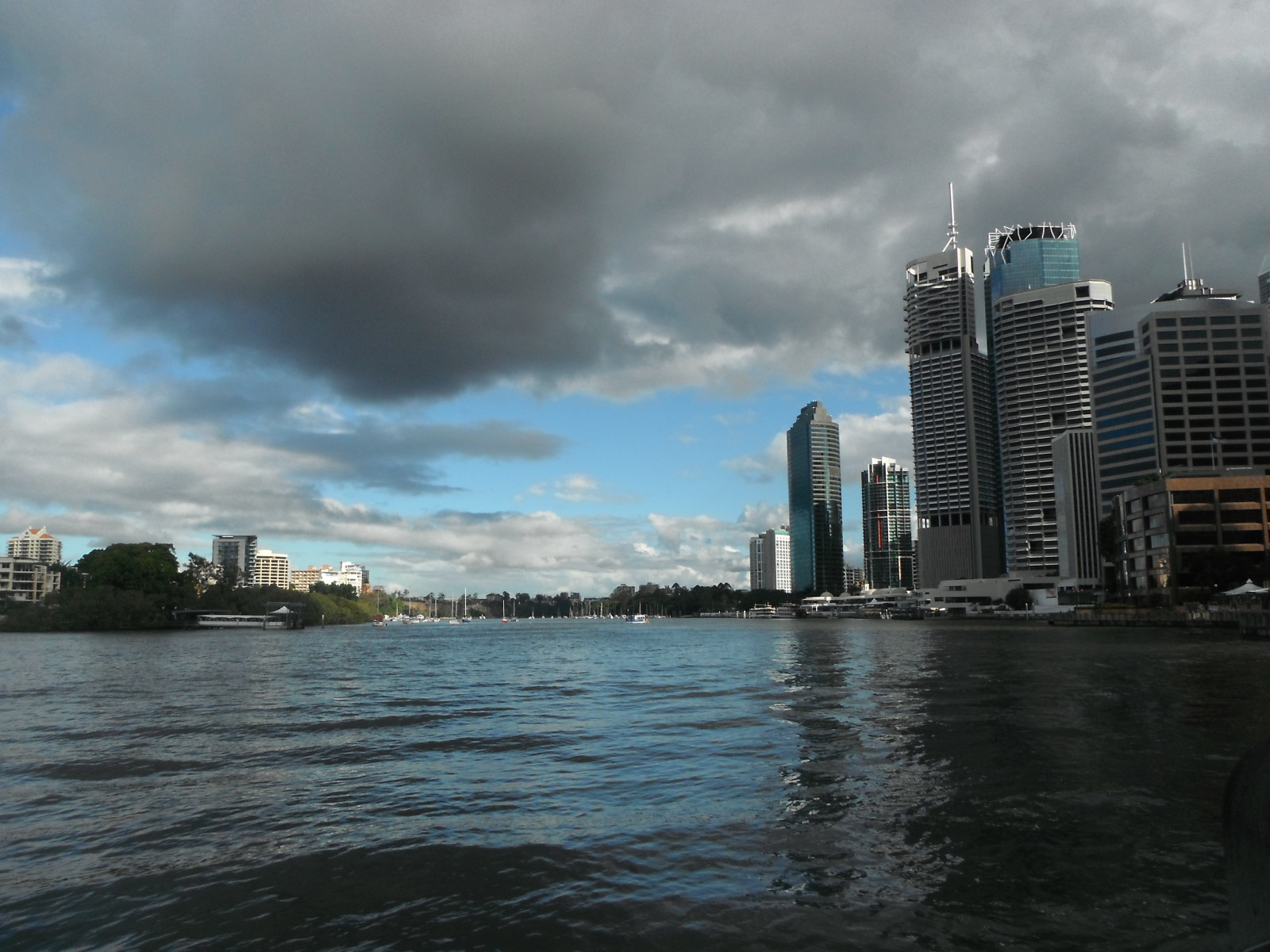one day in brisbane river