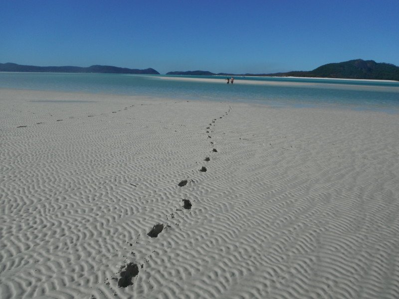 footprints in sand on whitehaven beach