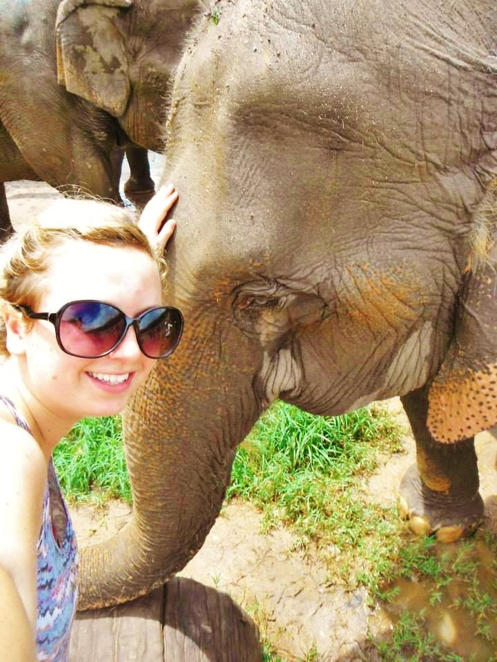 selfie with elephant