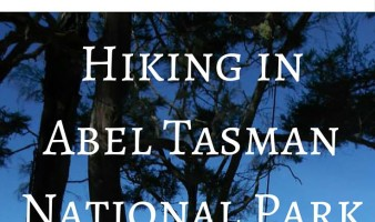 Scenic walks in Abel Tasman