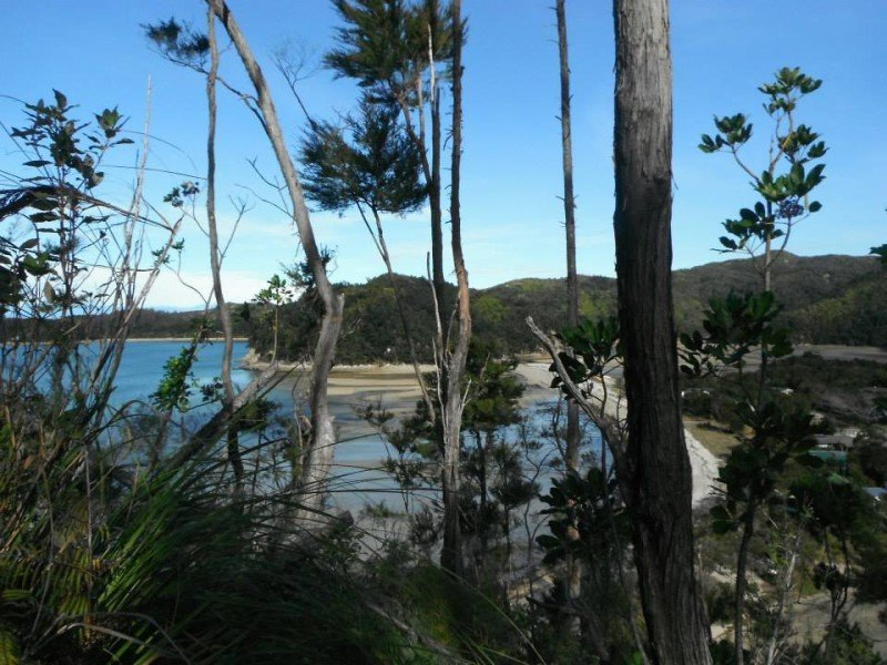 Hiking In Abel Tasman While I M Young And Skinny
