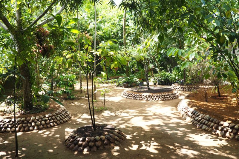 things to do in Ahungalla: spice garden