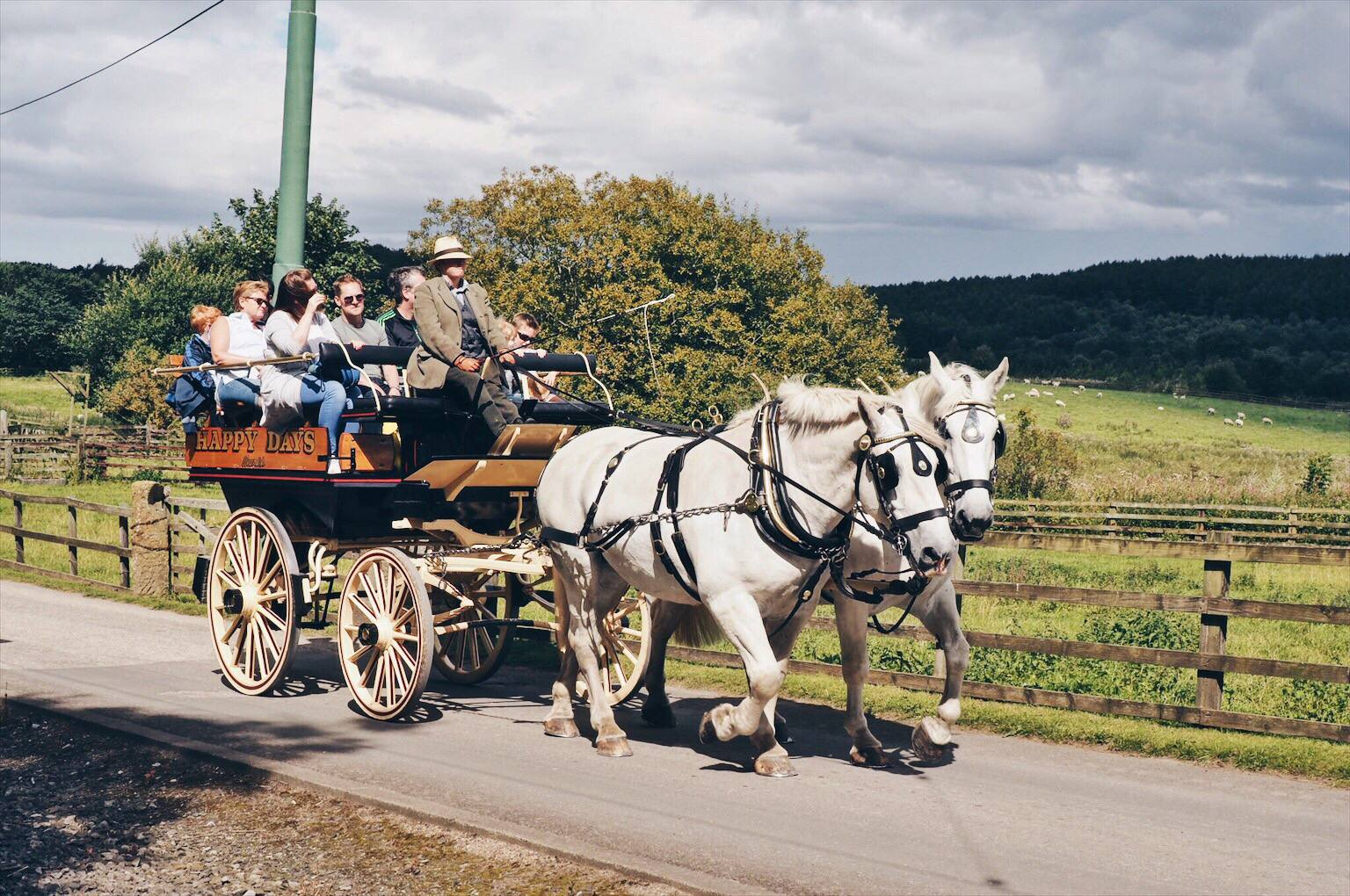 Horse and carriage at Beamish
