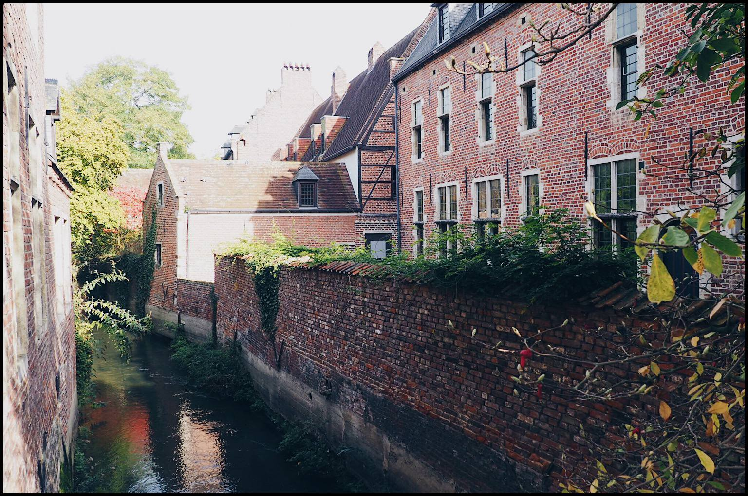 Things to do in Leuven