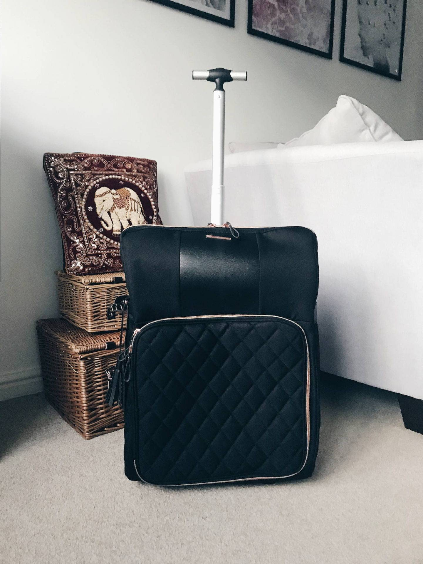 Most fashionable ladies cabin case for plane travel